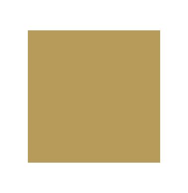 USA Masters Boxing Logo